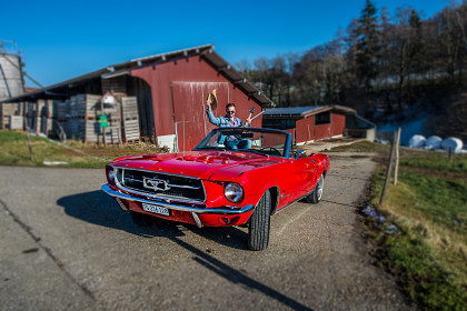 "Ford Mustang Convertible V8 ""Sally"""
